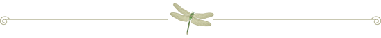 dragonfly-divider